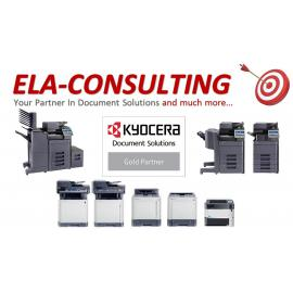 ELA consulting
